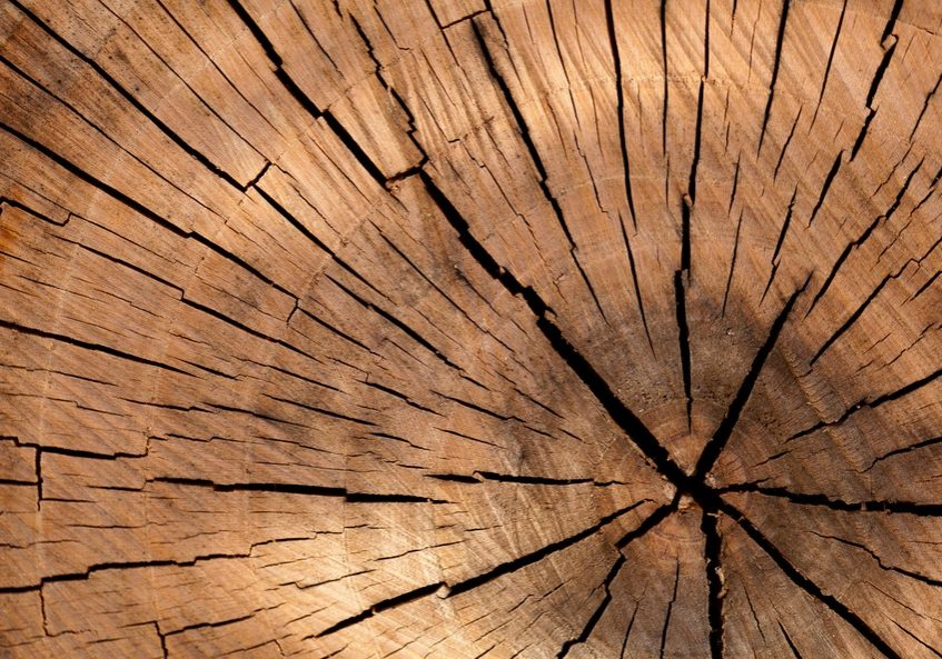 background-brown-circle-cut-40973-large